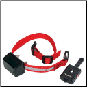 Innotek Spirit Training Collars